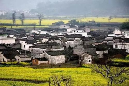 乡村将是未来中国人的奢侈品