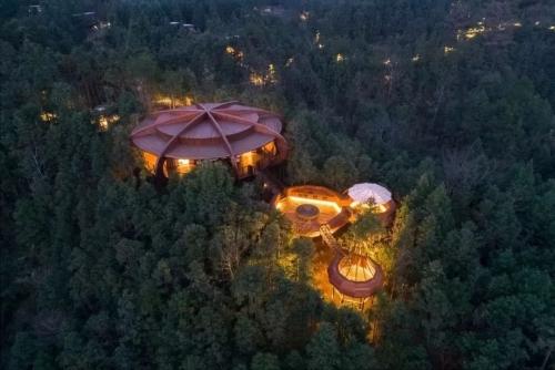 野奢树屋的创意设计,满足你对森林的所有幻想