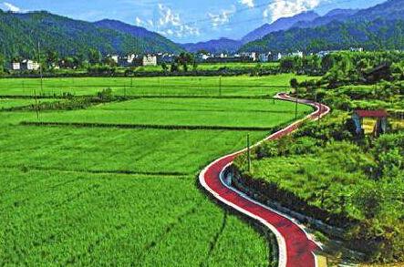 农业农村部:审议通过全国乡村产业发展规划,2020-2025年大力发展田园综合体