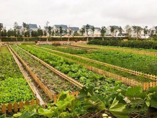 同意了!10%的建设用地发展乡村振兴产业计划指标!